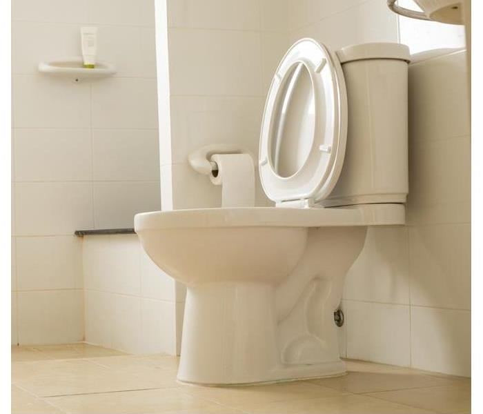 Water Damage 4 Basic Steps For Replacing a Leaky Toilet