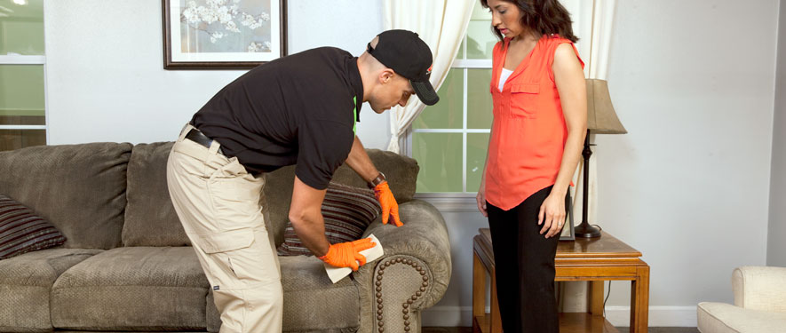 Melbourne, FL carpet upholstery cleaning