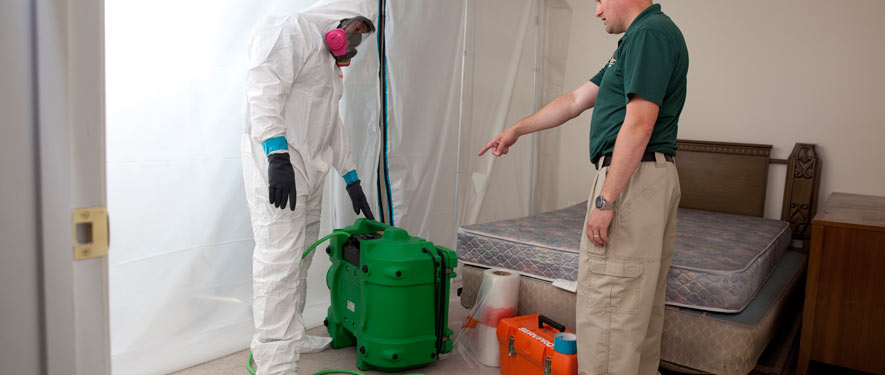 Melbourne, FL mold removal process